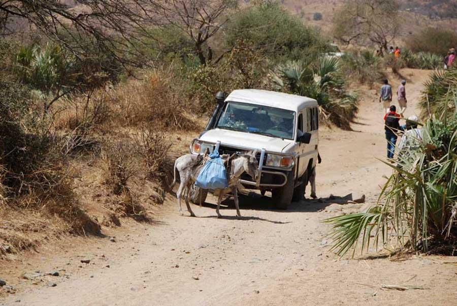 Auf dem beschwerlichen Weg in die Nuba-Berge